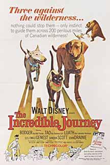 incredible-journey