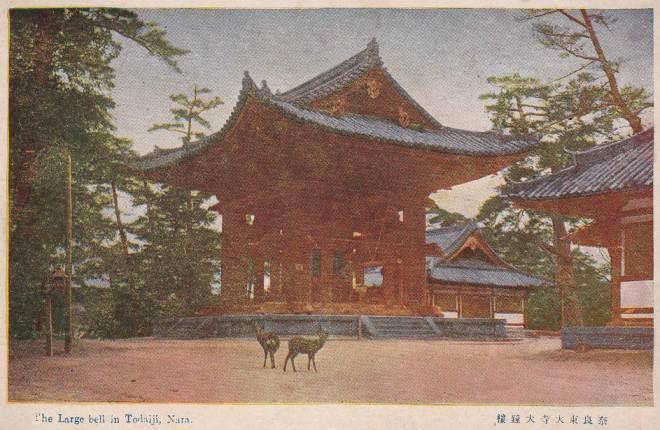 Nara-Bell-Deer