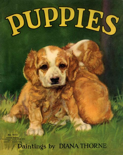 Puppies-1-WEB