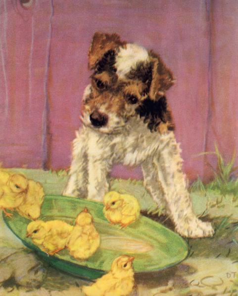 Puppies-2-WEB