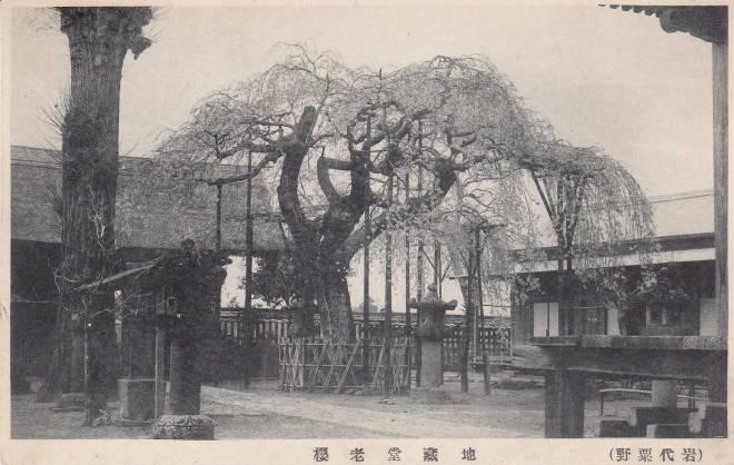 JP-Tree