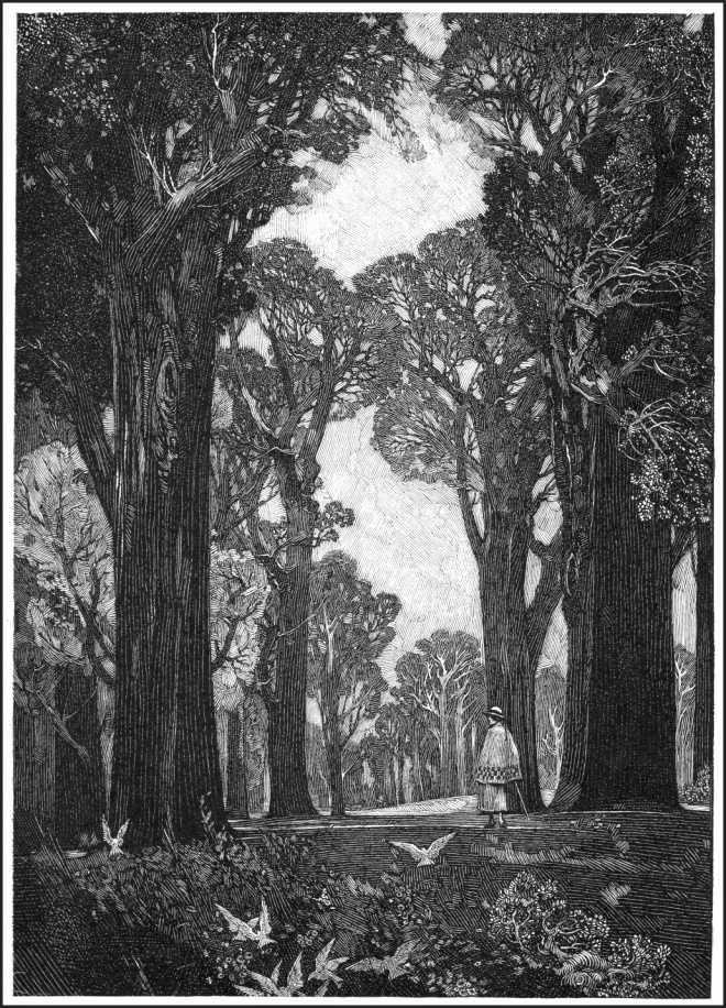 Franklin Booth The Woodland