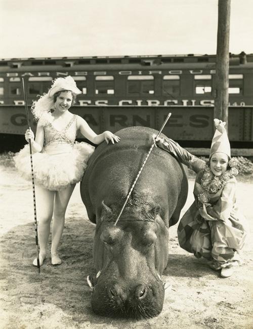 Lotus Circus Photo 1930