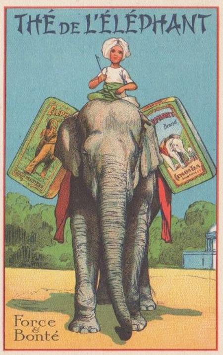 Tea Elephant 2