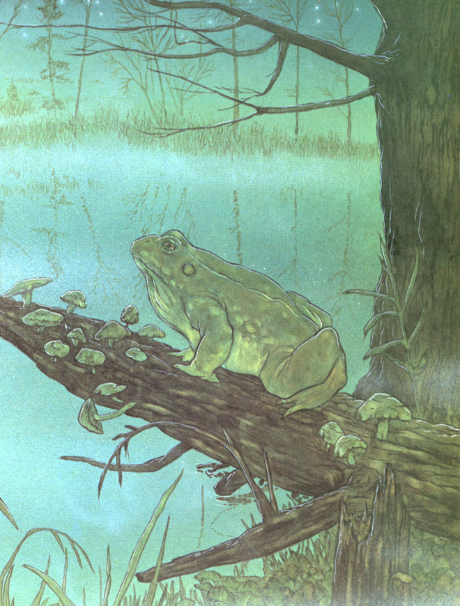 Frog Hague