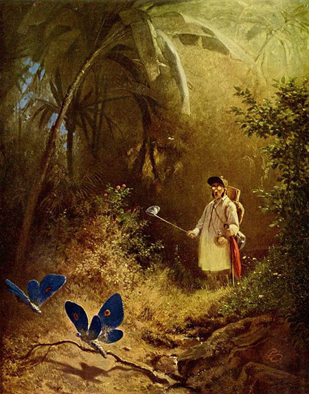 Carl Spitzweg The Butterfly Hunter