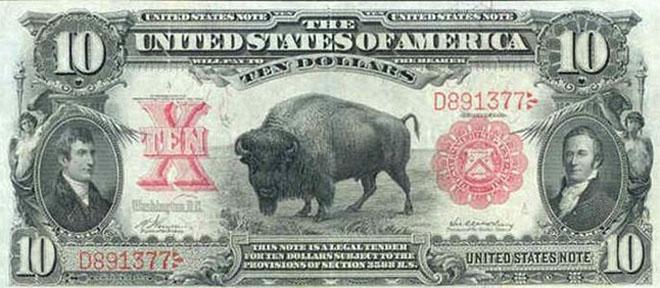 Bill Buffalo