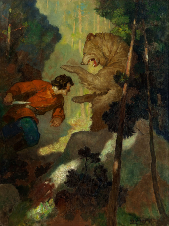 NC Wyeth Bear Strogoff