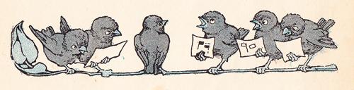 MEW Birds Singing