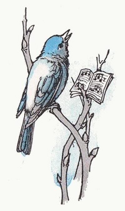 MEW Bluebird