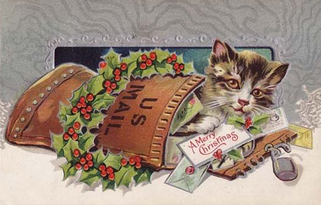 Christmas Mail Kitten.JPG