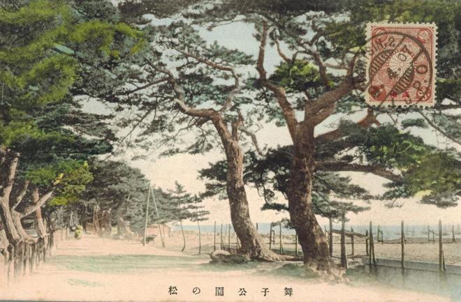 Trees Postcard.JPG