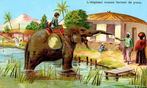 Mail Elephant 1900
