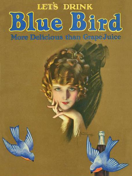 rolf-blue-bird
